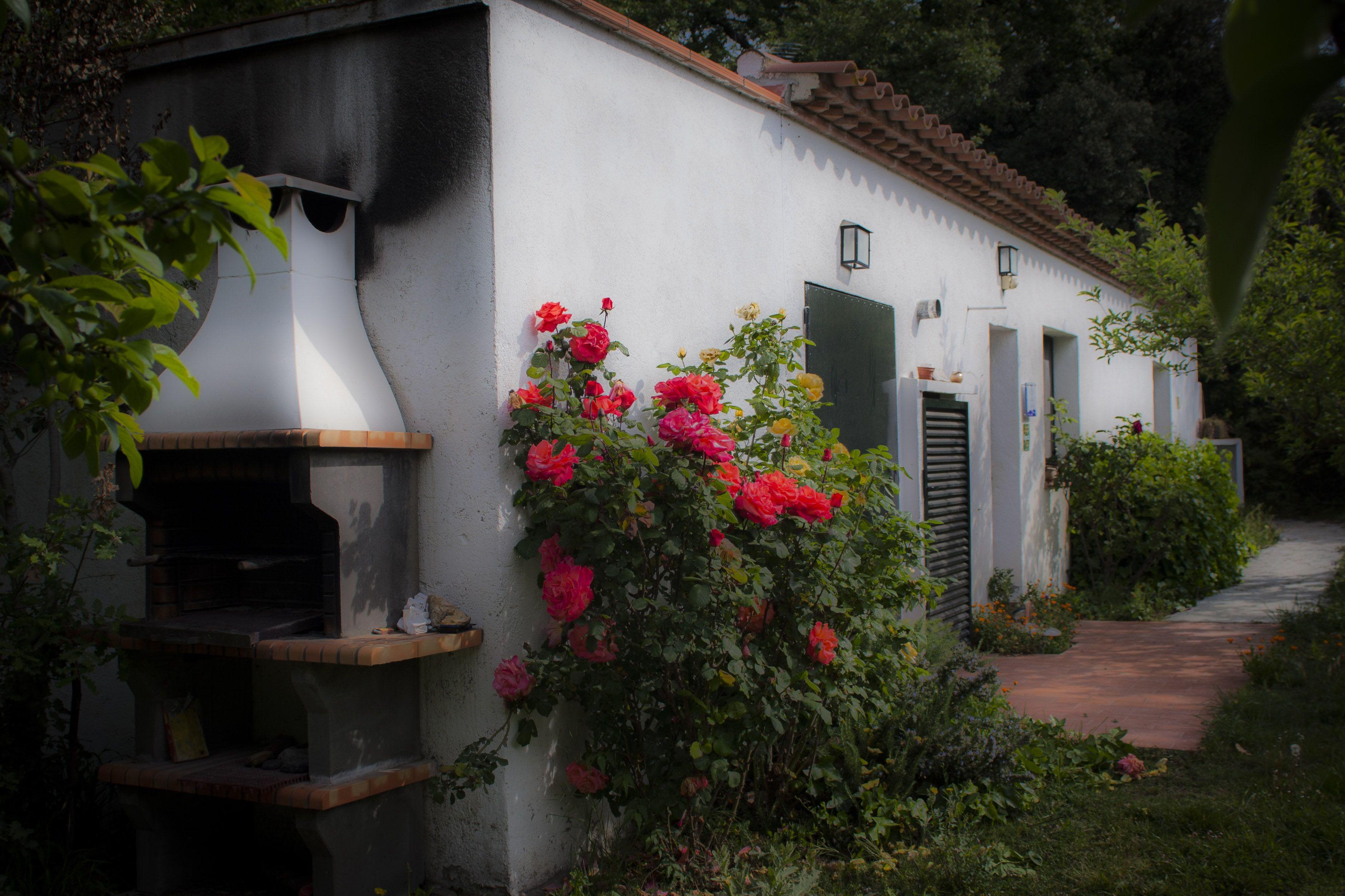 Les-oliveres-Manel-Cuesta-25